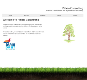 Pidela Consulting